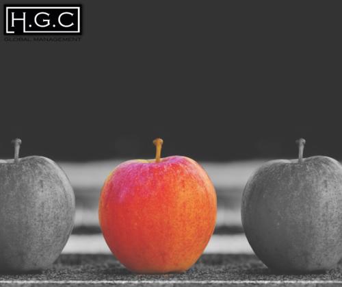 פיתוח מנהלים HGC - כיצד ניתן לזהות כישרון